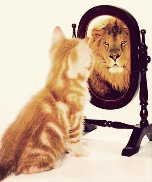 как научиться уважать самого себя, если вы – не совершенны